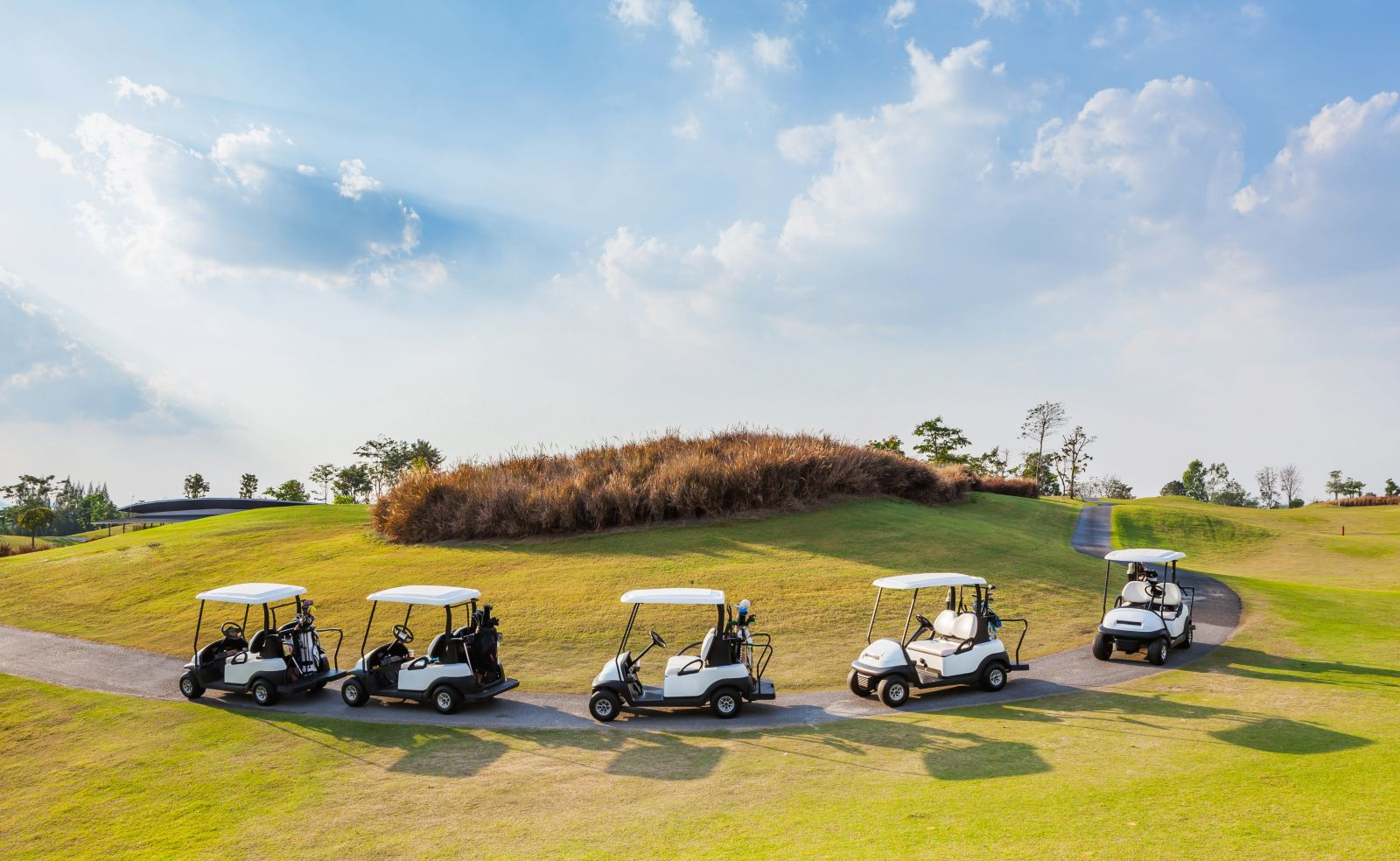 A group of golf carts are readied for riding on a cart path